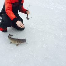 Ice Fishing 2015