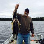 Gary's stringer of Walleye 2014